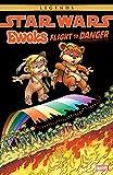 Star Wars: Ewoks - Flight To Danger (Star Wars: Ewoks (1985-1987)) (English Edition)