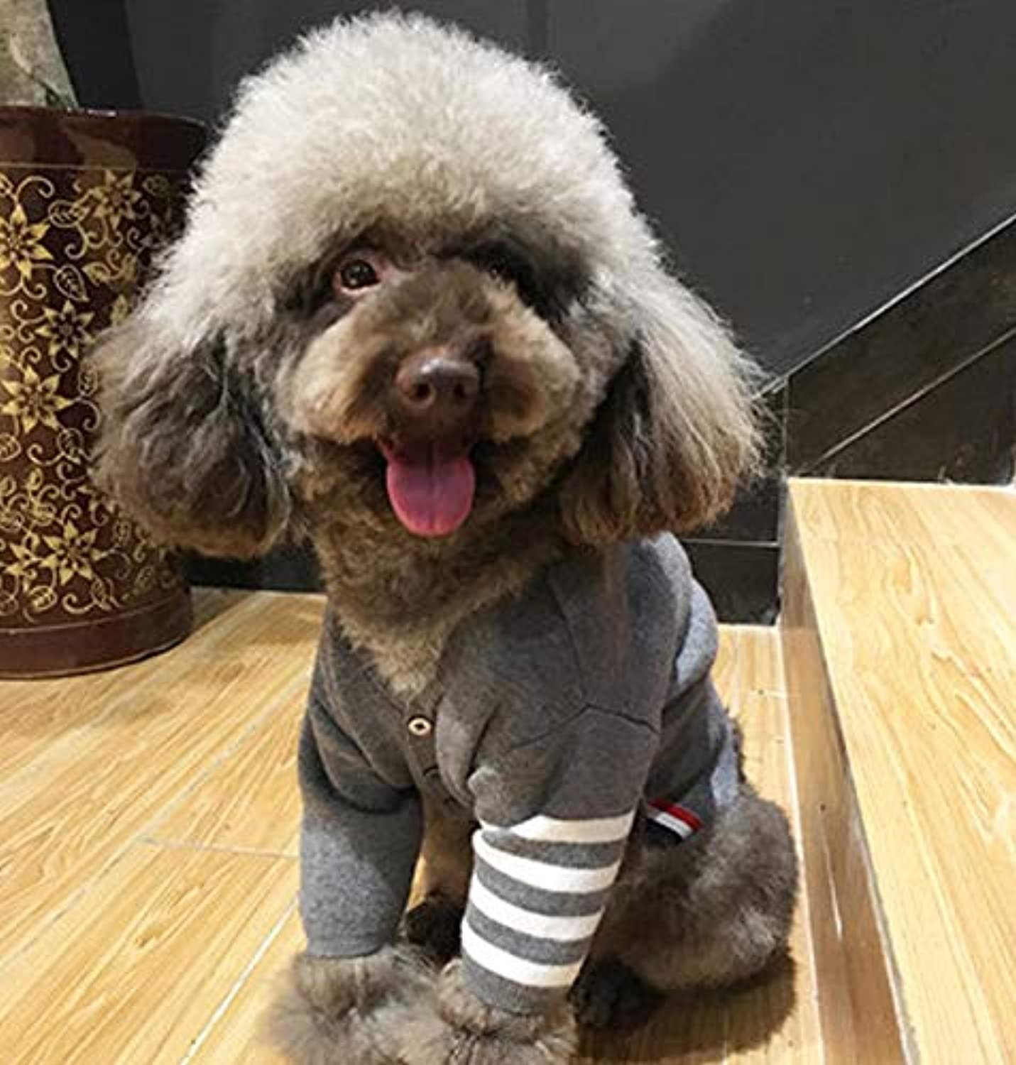Pet clothes, pet dog clothes, winter clothes, puppy, autumn and winter, Teddy, baby, small puppies, kittens, lawful sweater, plus velvet version  XXL