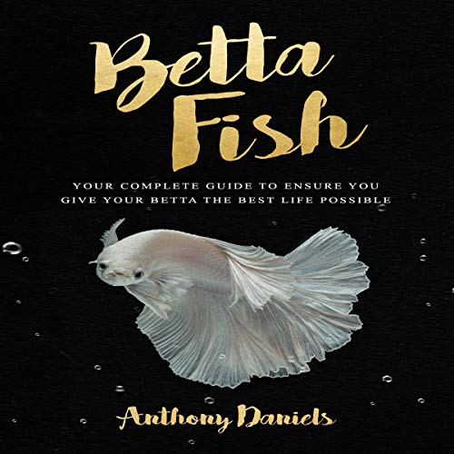 Betta Fish cover art