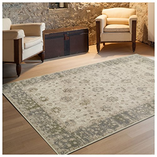 Superior Conventry Collection Area Rug, 8mm Pile Height with Jute Backing, Vintage Distressed Oriental Rug Design, Fashionable and Affordable Woven Rugs - 4' x 6' Rug