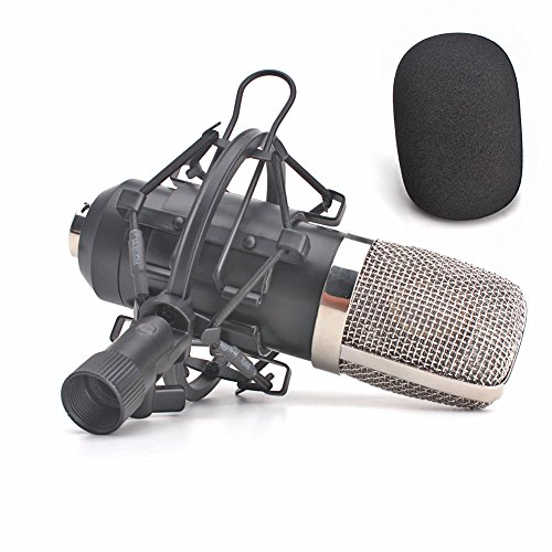 ZRAMO Large Diagram Condenser Mics Recording Microphone Studio Professional mic for Computer PC Use, Best Recording Studio Equipment for Recording with Mic Shock Mount Clip (TH901)