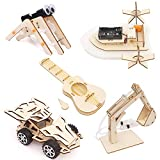 DANOFY 5 in 1 STEM Kit, Science Kits for Kids, Wooden Model Cars STEM Toys, Assembly Constructor 3D Building Blocks Educational, Woodworking DIY Science Experiment Projects for Boys and Girls