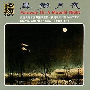 Faraway on a Moonlit Night