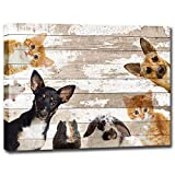 Cute Animals Canvas Wall Art Vintage Dog Cat Mouse Rabbit Hamster Picture Painting Print on Canvas Modern Home Decoration Framed and Stretched for Baby Room Kids Room Ready to Hang 16'x20'