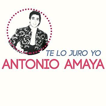Te Lo Juro Yo