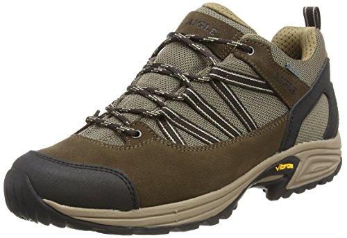 Aigle Herren Mooven Low Gtx Trekking- und Wanderhalbschuhe Braun (Dark Brown/beige) 43 EU