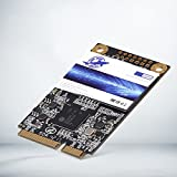 Dogfish Msata 256GB Internal Solid State Drive Mini Sata SSD Disk Drive High Performance Hard Drive for Desktop Laptop Notebook (256GB)