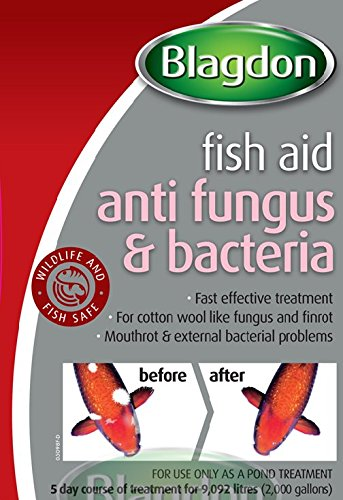 Blagdon Anti-Fungus & Bacteria Treatment for All Pond Fish, Finrot, Mouthrot, External Bacterial Infections, 1 Litre