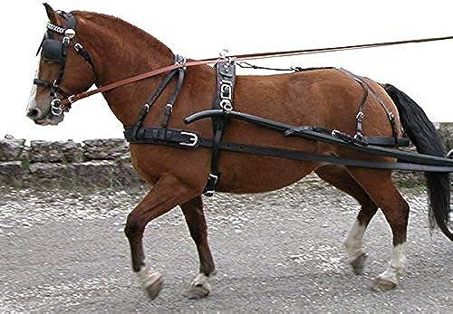 Harnais à 1 cheval extra - cheval
