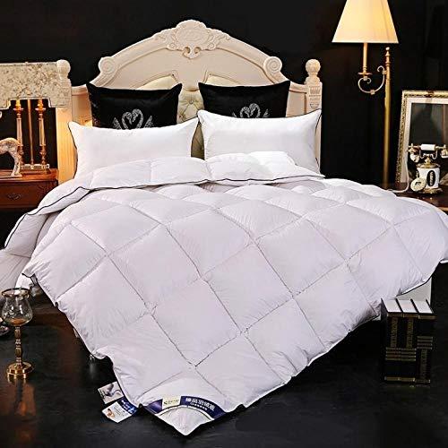 CHOU DAN Bettdecke Sommer Bettdecke 220 X 240 cm Sommer,Steppdecke Und Bettdeckeneinsatz WeißEs GroßEs Bett Mit Ecken-200 X 230 cm 3000 G