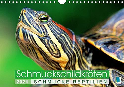 Schmuckschildkröten: Schmucke Reptilien (Wandkalender 2021 DIN A4 quer)