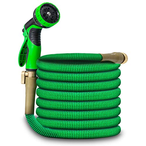 Bluecho Expandable Garden Hose, Flexible Water Hose with 10 Function Hose Nozzle (100 Feet)