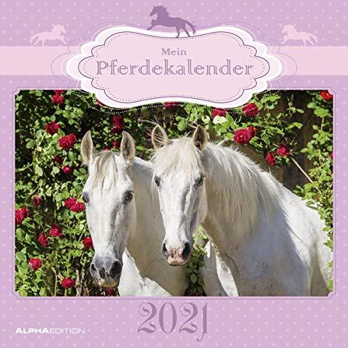 Mein Pferdekalender 2021 - Broschürenkalender 30x30 cm (30x60 geöffnet) - Bild-Kalender - Wandplaner - mit Platz für Notizen - Alpha Edition