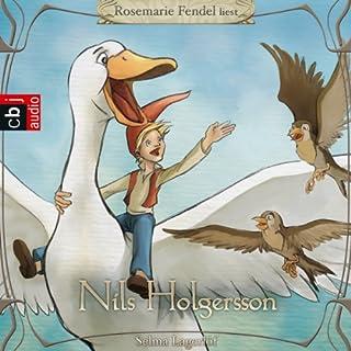Nils Holgersson Titelbild