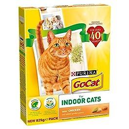 Go-Cat for Indoor Cats with Chicken & Garden Greens 825g