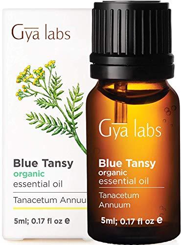 Aceite esencial de Blue Tansy orgánico (5 ml) - Grado terapéutico 100% puro - Gya Labs