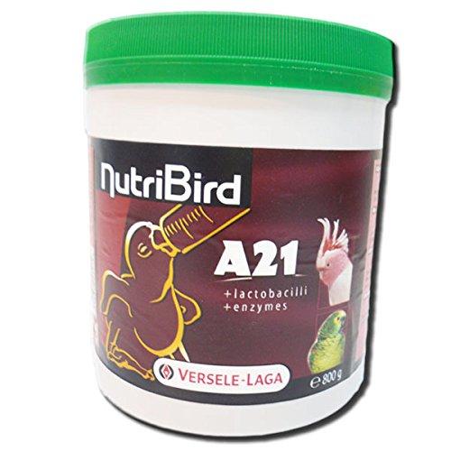 Nutribird A21 Papilla 800 gr