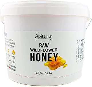 Raw Honey Bulk 34 lbs Bucket