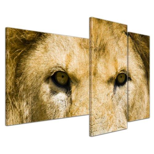 Wandbild - Löwe - Bild auf Leinwand 130x80 cm 3 teilig - Leinwandbilder Bilder als Leinwanddruck Tierbild Raubkatze - Nahansicht eines Löwenkopfes