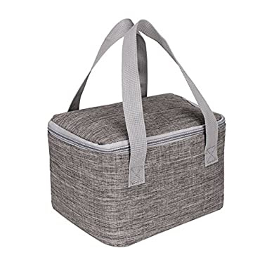 Insulated Lunch Bag, Molie 6L Aluminum Foil Insulation Lunch Box Travel Lunch Tote Lunch Organizer Lunch Holder Lunch Container for School Work Men/Women /Kids
