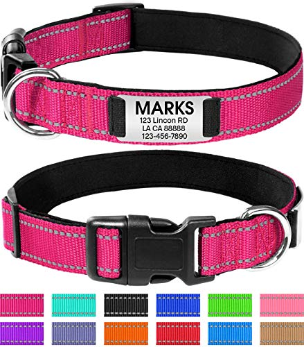 Joytale Personalized Dog Collar with Engraved Slide on ID Tags,Custom Reflective Collars for Small...