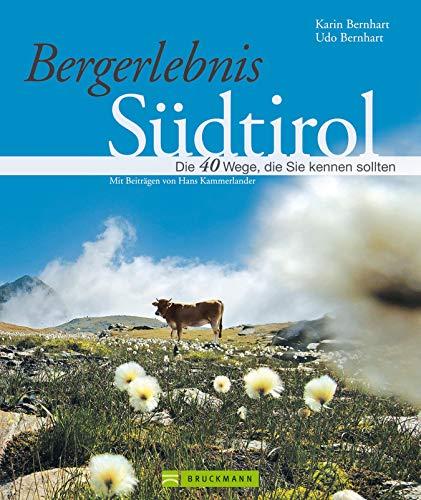 Bergerlebnis Südtirol - Wanderführer: Südtirol zu Fuß mediterran bis hochalpin: Der Wanderführer stellt 40 Traum-Wege vor, zum Bergwandern rund um das ... Sulden, Ortler, Reschen, Bruneck...