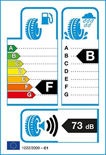 Roadstone g65511523585R16Q–F/B/73Db–Transporte Neumáticos