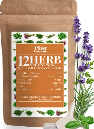 Herb Seeds Vault [12 Variety - 3600 Seeds]- Heirloom Non GMO - Herbs Seeds for Planting for Indoor and Outdoor   Herb Garden Seed Pack   Mint, Chives, Lavender, Cilantro, Parsley, Basil, Rosemary