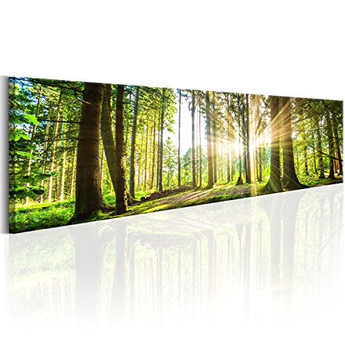 murando - Bilder Wald 172x45 cm Vlies Leinwandbild 1 TLG Kunstdruck modern Wandbilder XXL Wanddekoration Design Wand Bild - Waldlandschaft Natur Panorama Baum c-B-0149-b-b