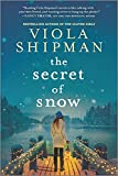 Image of The Secret of Snow: A Novel