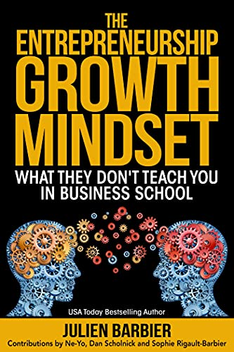 The Entrepreneurship Growth Mindset: What They Don't Teach You in Business School