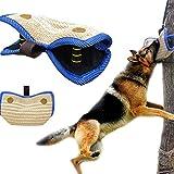 Adiestramiento De Perros Mordida Mangas De Brazo Equipo De Adiestramiento De Perros Funda Protectora Proteccin De Brazo Para Proteccin De Brazo De Mano Izquierda Y Derecha Deportes Para Perros