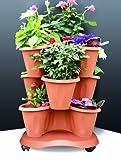 Immagine 1 bama vaso trifoglio