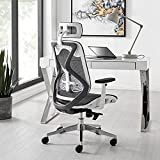 Comfortable Executive Chair with Ergonomic Lumbar Support and Head Rest Internal Frame Material: Glass Filled Nylon Structure with Breathable mesh | Color: White and Grey | Seat : Breathable Mesh | Size: High Back Arms: Nylon Adjustable Arms | Mechan...