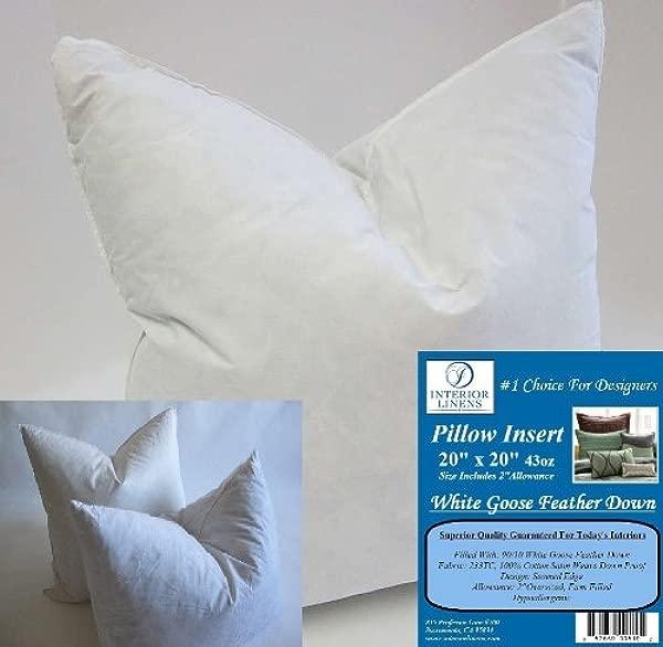 2 个枕头插入 20X20 43oz 90 10 白鹅毛羽绒 2 个超大号牢固填充实际尺寸 22X22