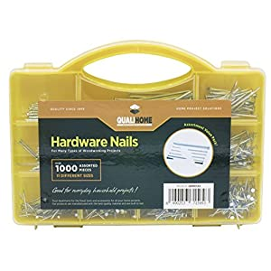 Top Quality Nail Assortment Kit – Over a 1000 Multipurpose Hardware Nails - 11 Different Sizes – Non Bendable & Sturdy - Compact Organized Box (Over a 1000 Nails)