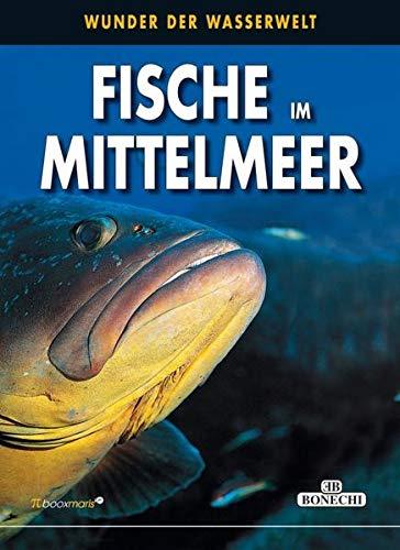 Fische im Mittelmeer: Wunder der Wasserwelt (PiBoox Maris)