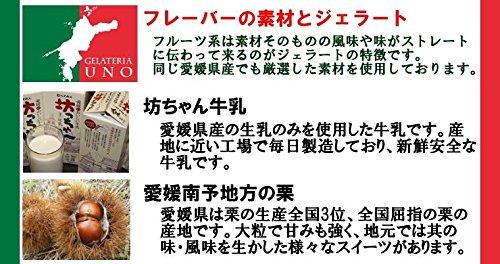 愛媛産ジェラート6種類12個詰め合わせアイスギフト栗デコポン七折小梅愛南ゴールドブラッドオレンジミルク