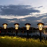 10 Best Path Lights