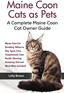 Maine Coon Cats as Pets: Maine Coon Cat Breeding, Where to B