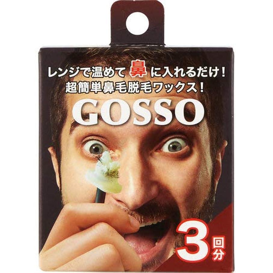 適性接尾辞造船GOSSO-ゴッソ- 3回分