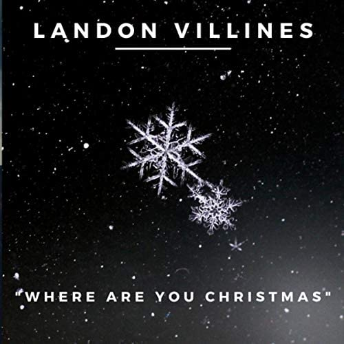 Landon Villines