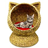 Altitude WorldWide Water Hyacinth 20' Hand Made Cat Bed Basket House with Washable Cushion
