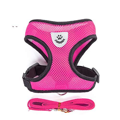 MYYXGS Halsband mit Hundebrustgurt - für kleine und mittlere Hunde geeignet. Gitterlüftung im Sommer Verbessert die Reißfestigkeit. Enthält Reflexstreifen. Freie Einstellung.