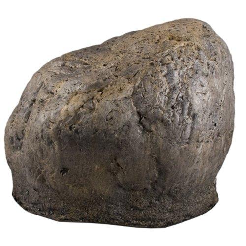 hidden camera in a rock