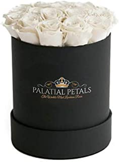 PALATIAL PETALS Princess White Roses That Last A Year | 365 Day+ Long Lasting Roses | Preserved Forever Rose Arrangement Flower Box Bouquet | Birthday Gifts for Her Women Girlfriend Mom (White/Black)