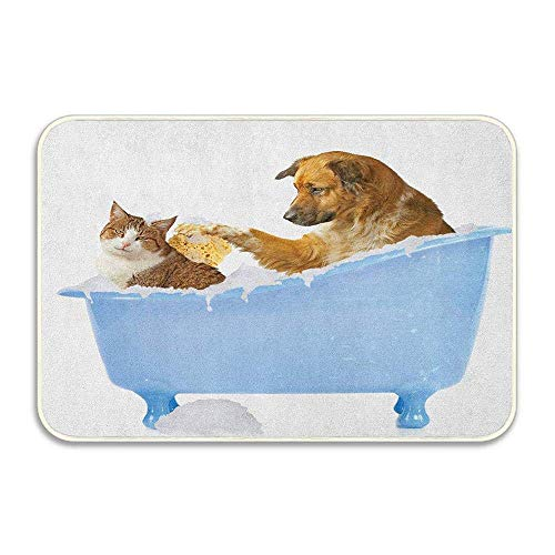 Dog Kitty in The Bathtub Together Bubbles Shampooing Have Shower Fun Print...