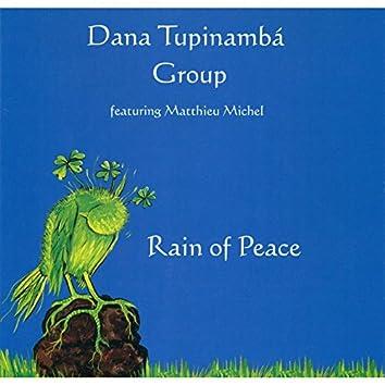 Rain of peace (feat. Matthieu Michel)