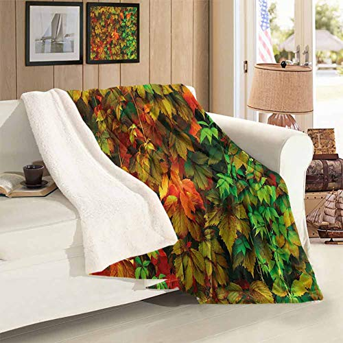 Comfortable Sofa Blanket Throw Size Vivid Leaves of Fall Colorful Fresh Nature Leafage Change of Seasons Theme Image Print Cashmere All Season Blanket for Home Use Blankets 59 x 31 inch