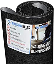 "Lube environ 28.35 g Walking Ceintures LLC-Cybex Q20ci 110/"" Walking ceinture 1 oz"